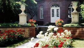 Garten – Historisches Museum Basel – Haus zum Kirschgarten